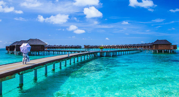 ve-may-bay-di-maldives
