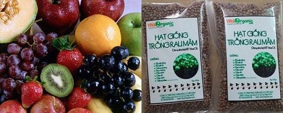 Trái cây và hạt giống cũng bị cấm mang vào nước Mỹ